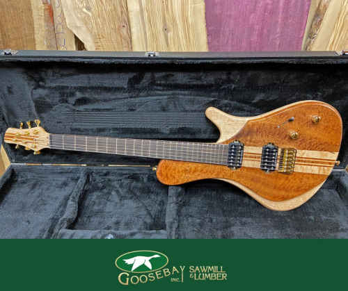 Photo of wooden electric guitar in case